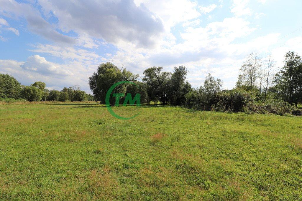 Działka rolna na sprzedaż Piskornia  15926m2 Foto 7