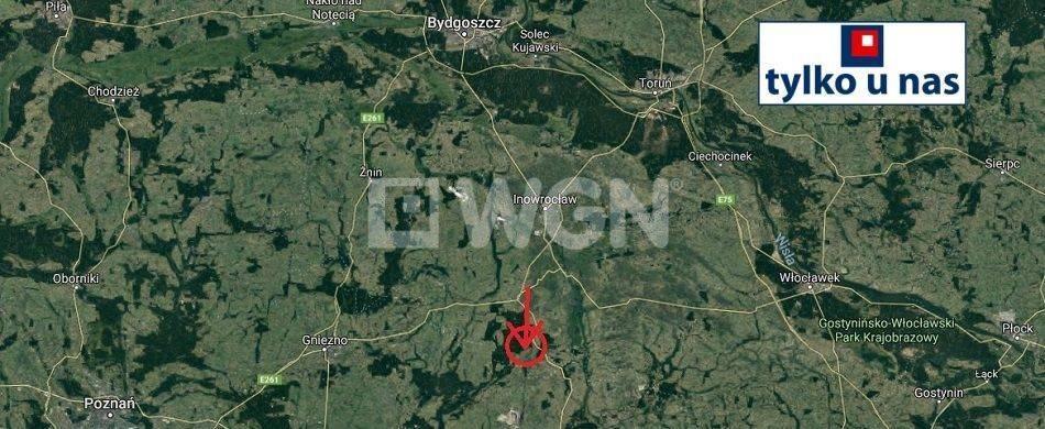 Działka siedliskowa na sprzedaż Strzelno, Strzelno  16200m2 Foto 2