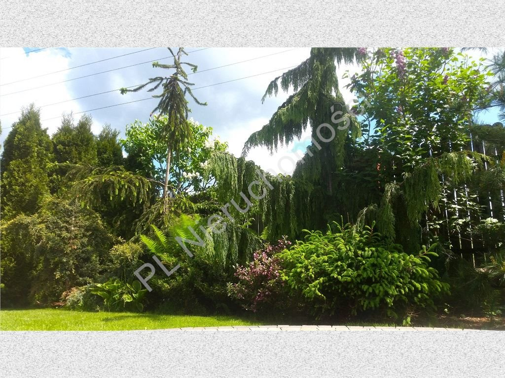 Dom na sprzedaż Zakręt  250m2 Foto 11