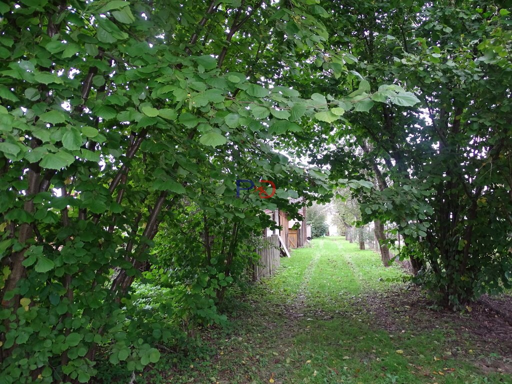 Dom na sprzedaż Lubaczów  60m2 Foto 4