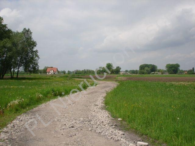 Działka rolna na sprzedaż Holendry Baranowskie  15700m2 Foto 4
