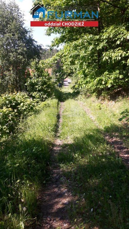 Działka leśna na sprzedaż Kaczory  2645m2 Foto 6