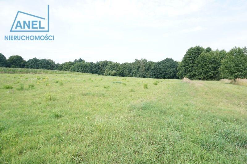 Działka rolna na sprzedaż Mikołów, Paniowy  1086m2 Foto 1