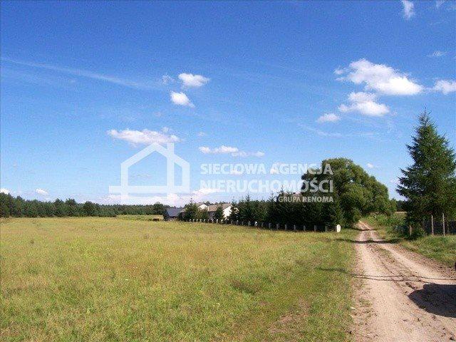 Działka siedliskowa na sprzedaż Śliwiczki  3157m2 Foto 3