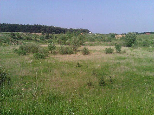 Działka rekreacyjna na sprzedaż Kołczewo  2101m2 Foto 4