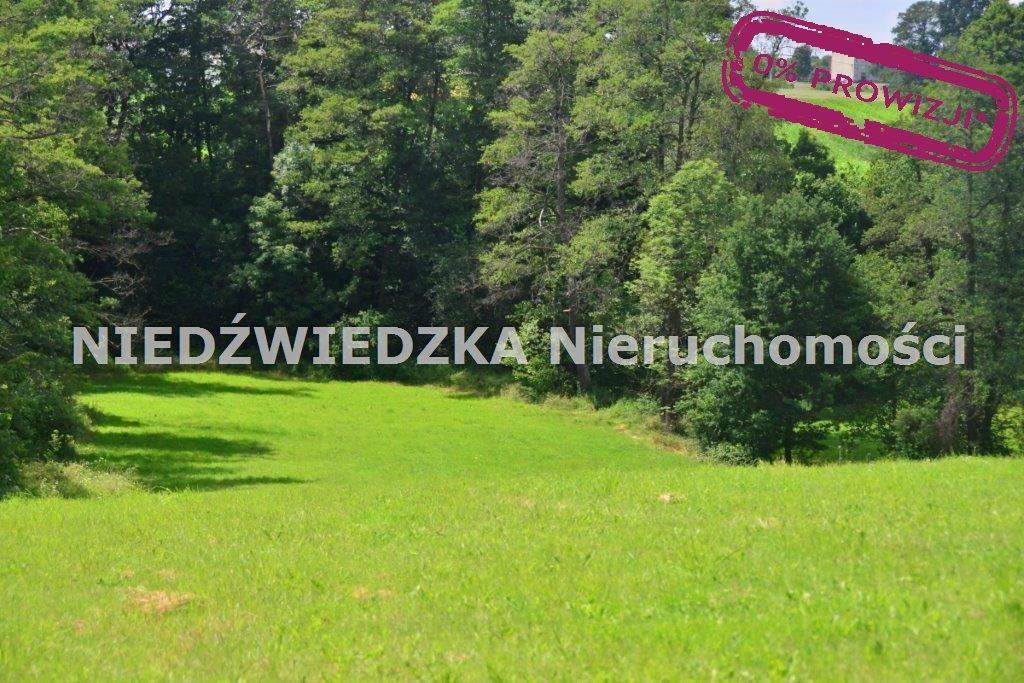 Działka budowlana na sprzedaż Mikołów, Mokre  12507m2 Foto 9