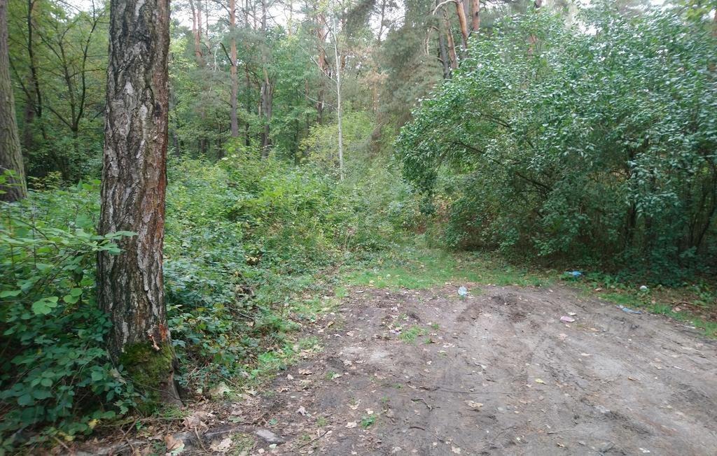 Działka leśna z prawem budowy na sprzedaż Sękocin-Las  2300m2 Foto 4