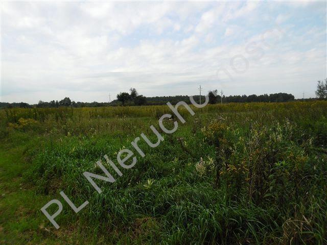 Działka rolna na sprzedaż Olesin  9983m2 Foto 7