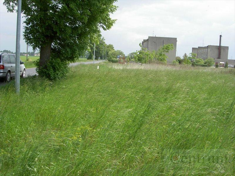 Działka budowlana na sprzedaż Narok, Wiejska  12420m2 Foto 5