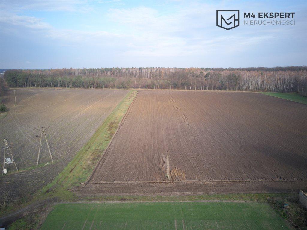 Działka budowlana na sprzedaż Ostrów Wielkopolski  1189m2 Foto 7