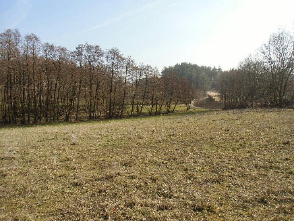 Działka budowlana na sprzedaż Kosowo  1000m2 Foto 5