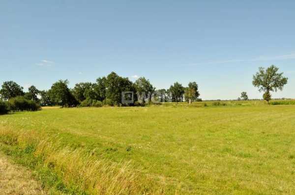 Działka rolna na sprzedaż Piersna, Piersna  8739m2 Foto 3