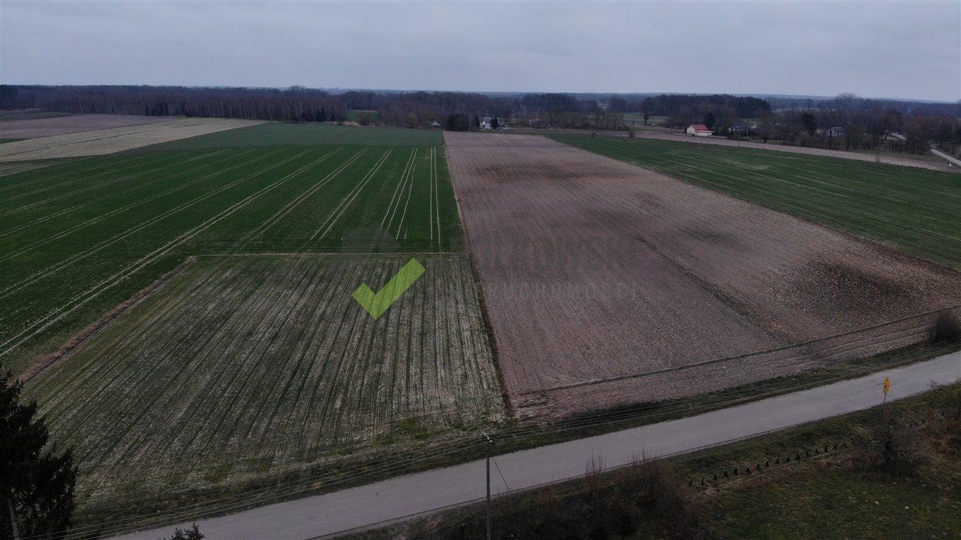 Działka rolna na sprzedaż Strzeszewo  3000m2 Foto 6