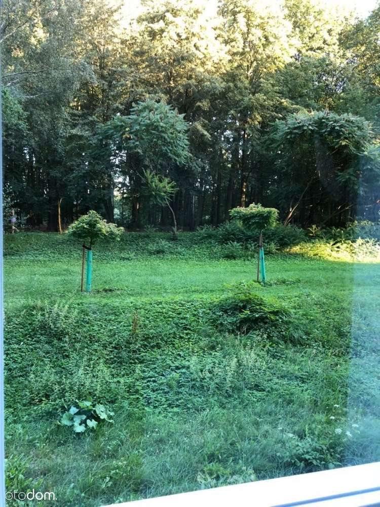 Kawalerka na wynajem Katowice, Giszowiec, Wojciecha 43  33m2 Foto 10