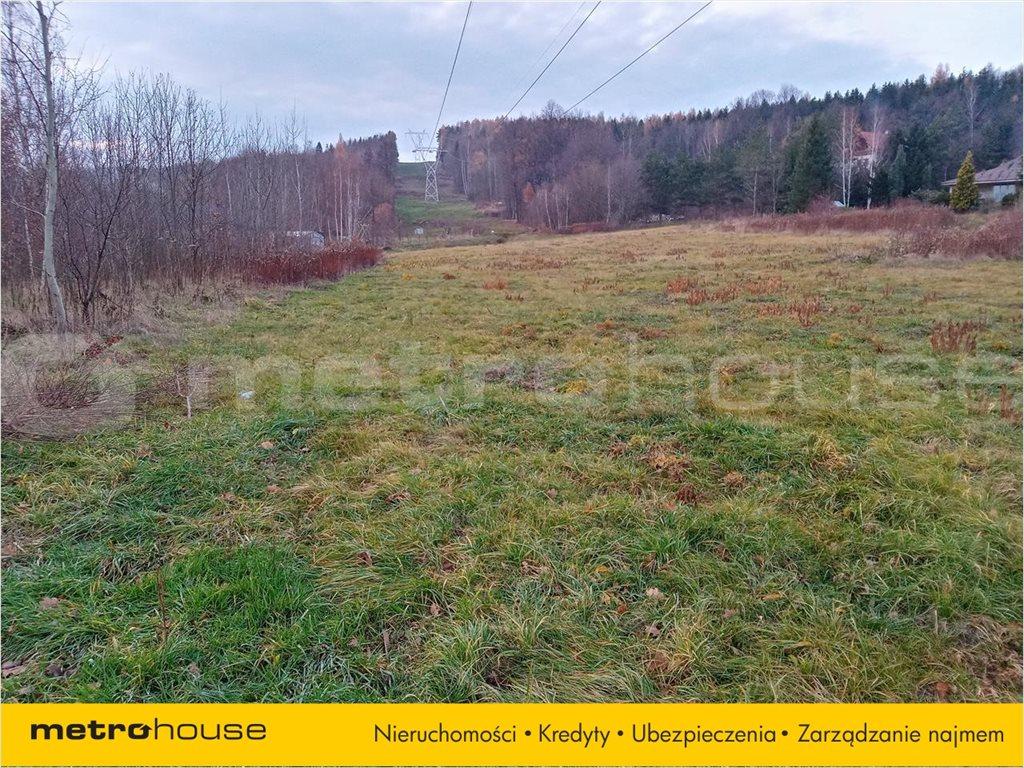 Działka rolna na sprzedaż Wojcieszyce, Stara Kamienica  14999m2 Foto 3