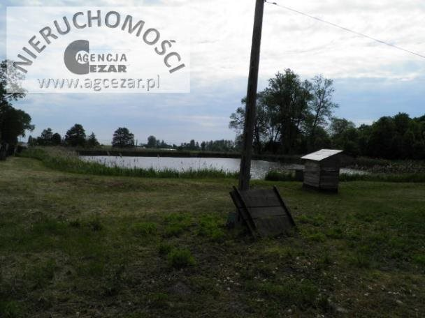 Działka rolna na sprzedaż Mrozy  44472m2 Foto 8