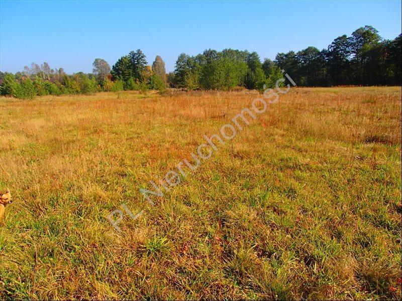 Działka rolna na sprzedaż Stanisławów  12800m2 Foto 5