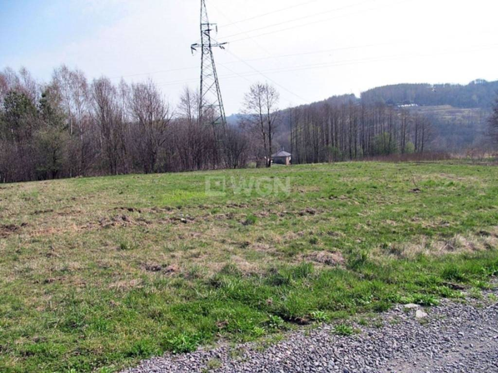 Działka budowlana na sprzedaż Chmielnik, Chmielnik, Chmielnik  1509m2 Foto 5