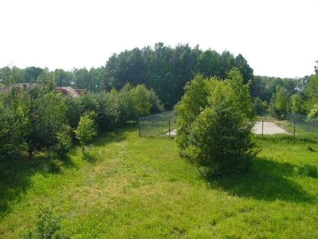 Dom na sprzedaż Trzcianka  894m2 Foto 1