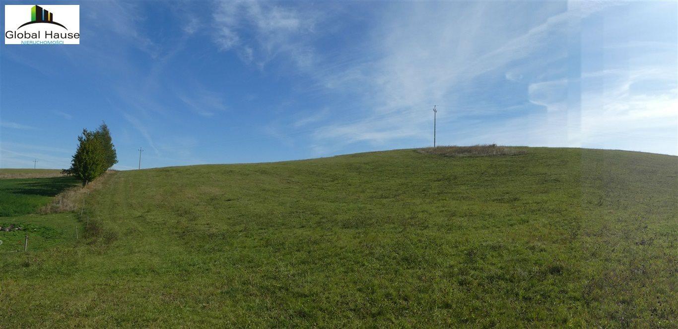 Działka rolna na sprzedaż Skomack Wielki  5000m2 Foto 3