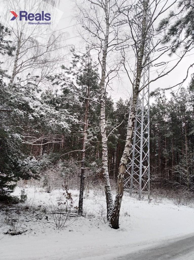 Działka leśna z prawem budowy na sprzedaż Warszawa, Wawer, Anin  3734m2 Foto 5