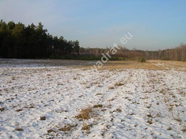 Działka rolna na sprzedaż Stanisławów  3000m2 Foto 13
