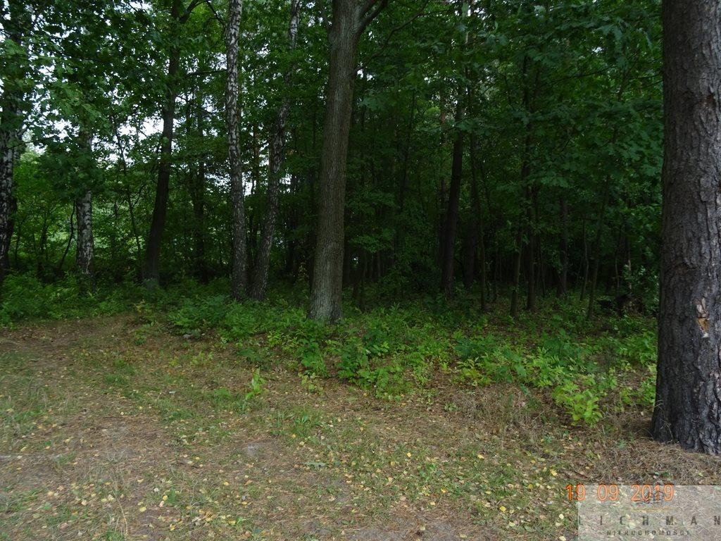 Działka leśna z prawem budowy na sprzedaż Justynów  2054m2 Foto 2