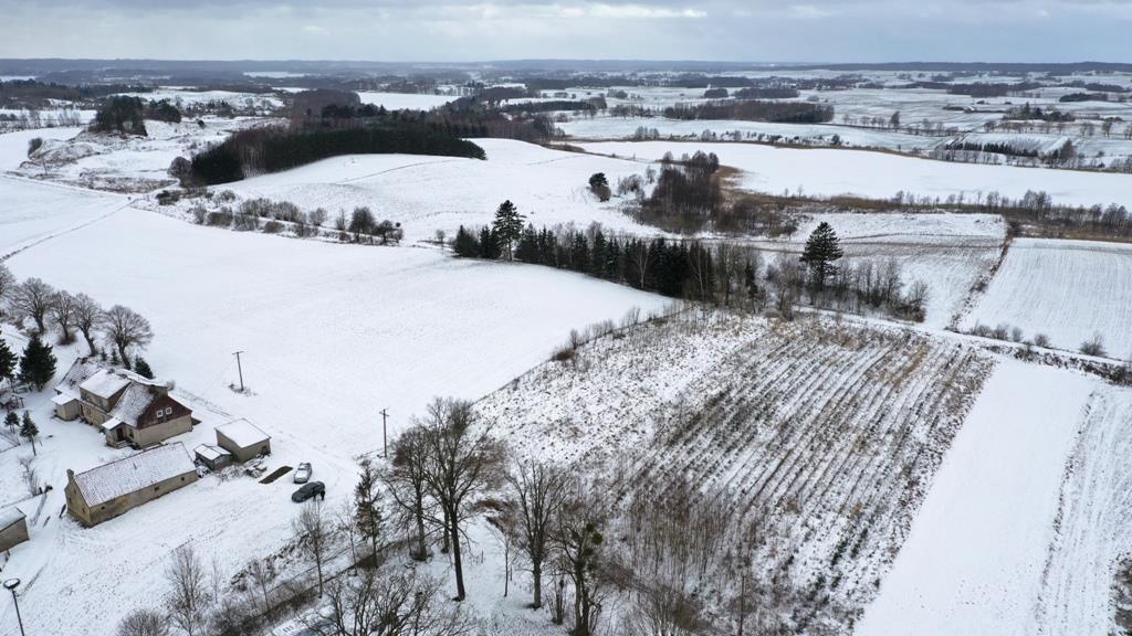 Działka rolna na sprzedaż Wyszowate, Wyszowate  3000m2 Foto 5