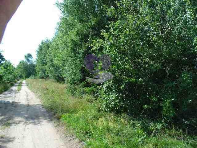 Działka rolna na sprzedaż Studzianki  1611m2 Foto 9