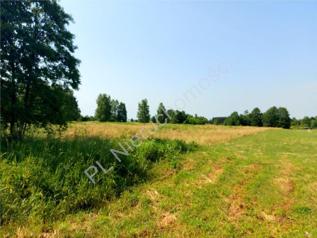 Działka rolna na sprzedaż Ruda  4516m2 Foto 8