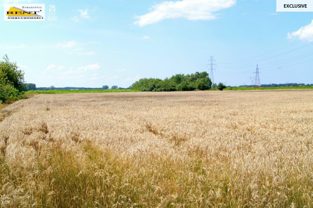 Działka rolna na sprzedaż Kobylanka  14458m2 Foto 2
