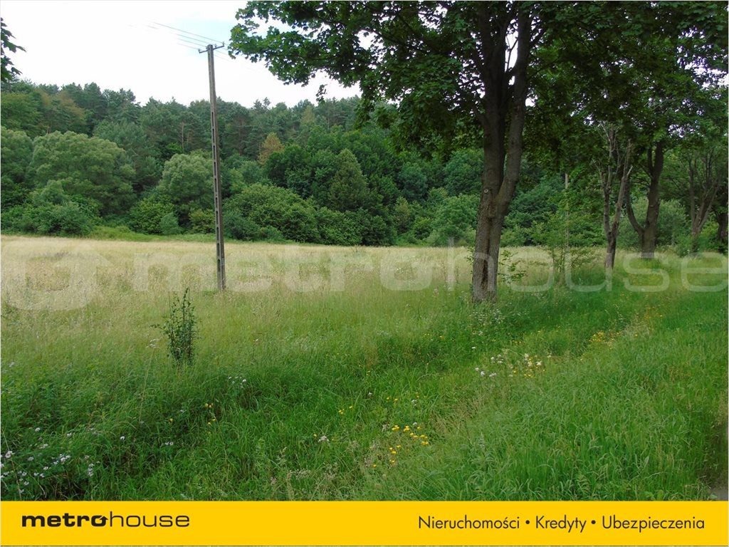 Działka rolna na sprzedaż Zahoczewie, Baligród  9000m2 Foto 4