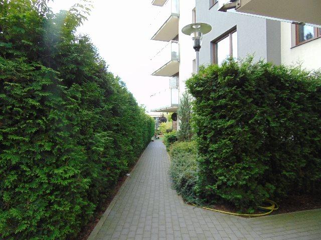 Mieszkanie trzypokojowe na wynajem Toruń, Mokre, Chełmińska  59m2 Foto 2