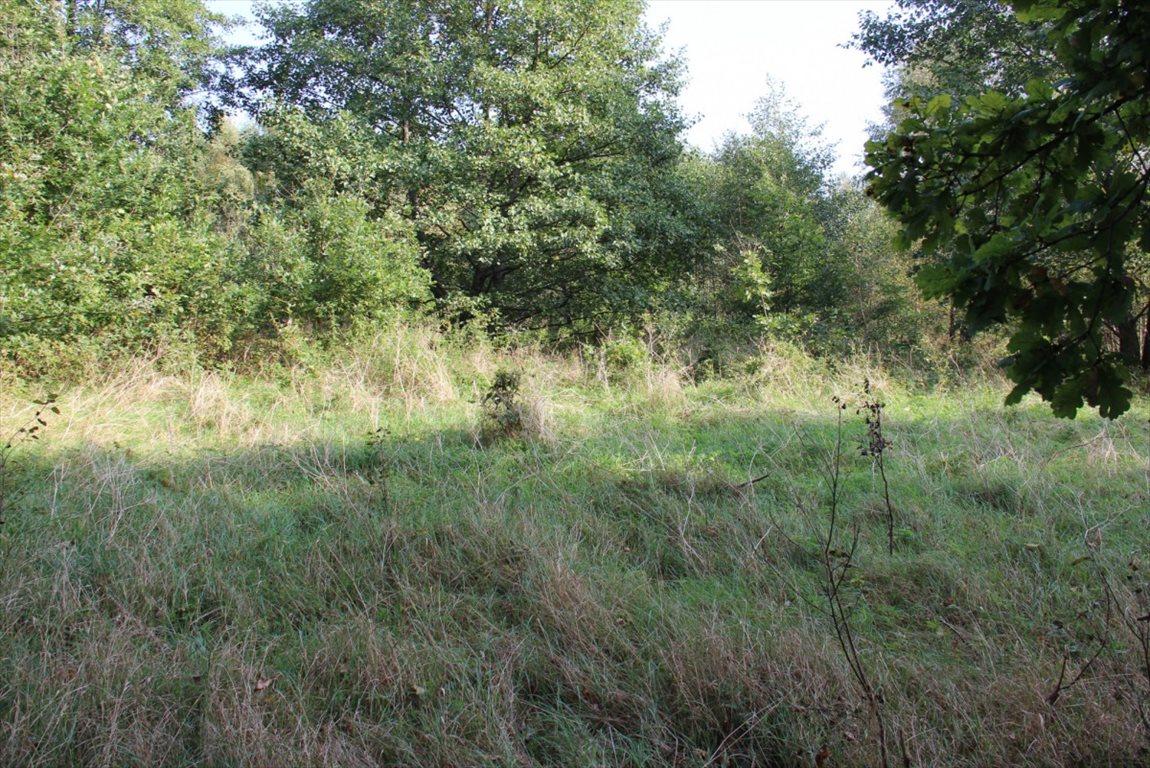 Działka rolna na sprzedaż Salinko  17808m2 Foto 8