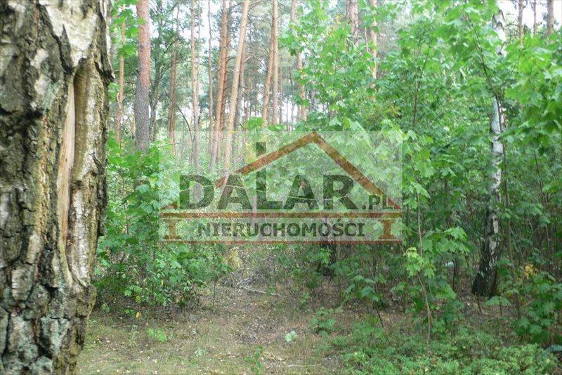 Działka leśna na sprzedaż Lesznowola, Jazgarzewszczyzna  26600m2 Foto 4