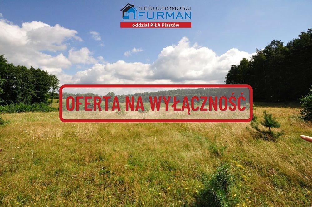 Działka rolna na sprzedaż Zabrodzie  7600m2 Foto 6