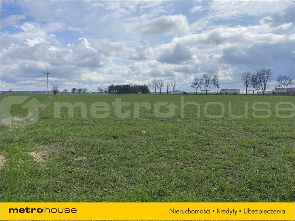 Działka rolna na sprzedaż Rogoźnica, Międzyrzec Podlaski  14100m2 Foto 6