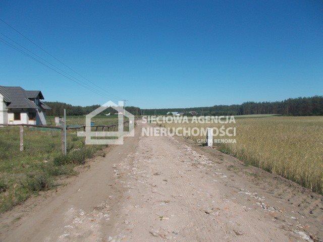 Działka inwestycyjna na sprzedaż Śliwice  14138m2 Foto 2