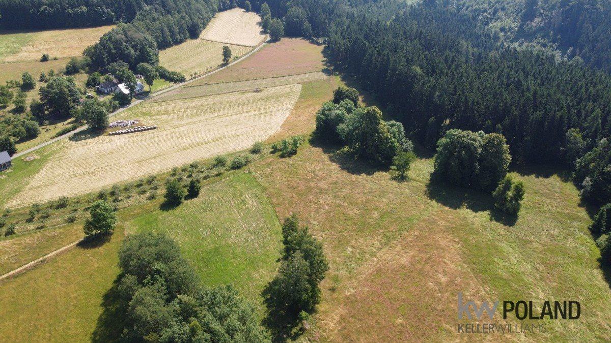 Działka rolna na sprzedaż Kudowa-Zdrój, Pstrążna  4386m2 Foto 4