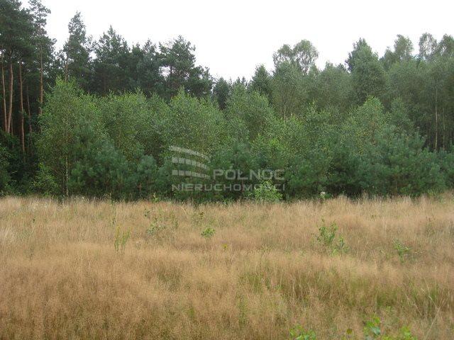 Działka rolna na sprzedaż Kudrycze  3151m2 Foto 4