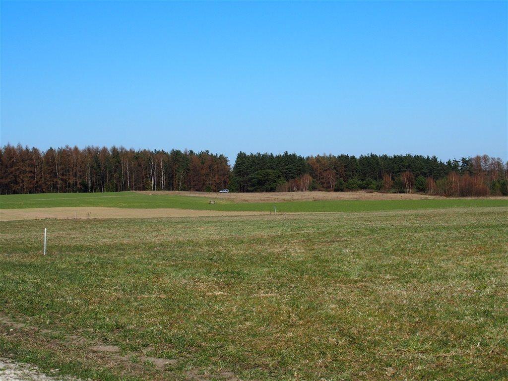 Działka budowlana na sprzedaż Bieszkowice  805m2 Foto 1