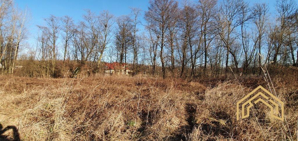 Działka budowlana na sprzedaż Chmielnik  4300m2 Foto 4