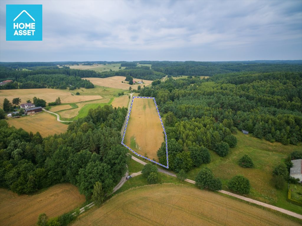 Działka rolna na sprzedaż Błotnia  9300m2 Foto 5