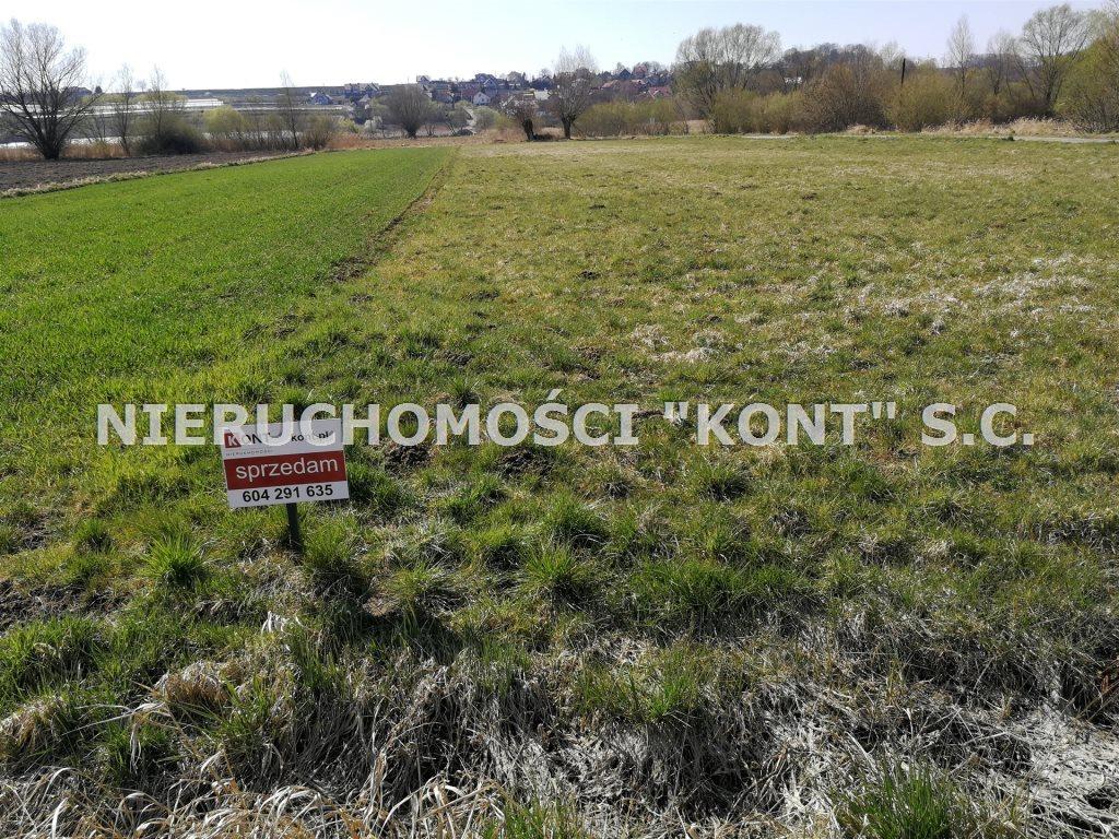 Działka rolna na sprzedaż Raciborowice  900m2 Foto 1