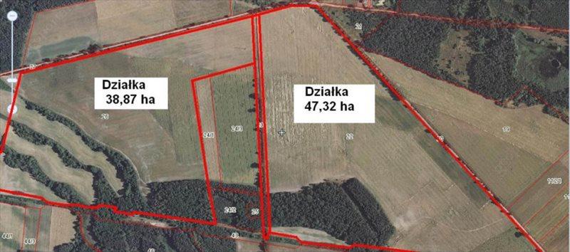 Działka rolna na sprzedaż Gorzewo, 86,19 ha !! Gorzewo  861900m2 Foto 1
