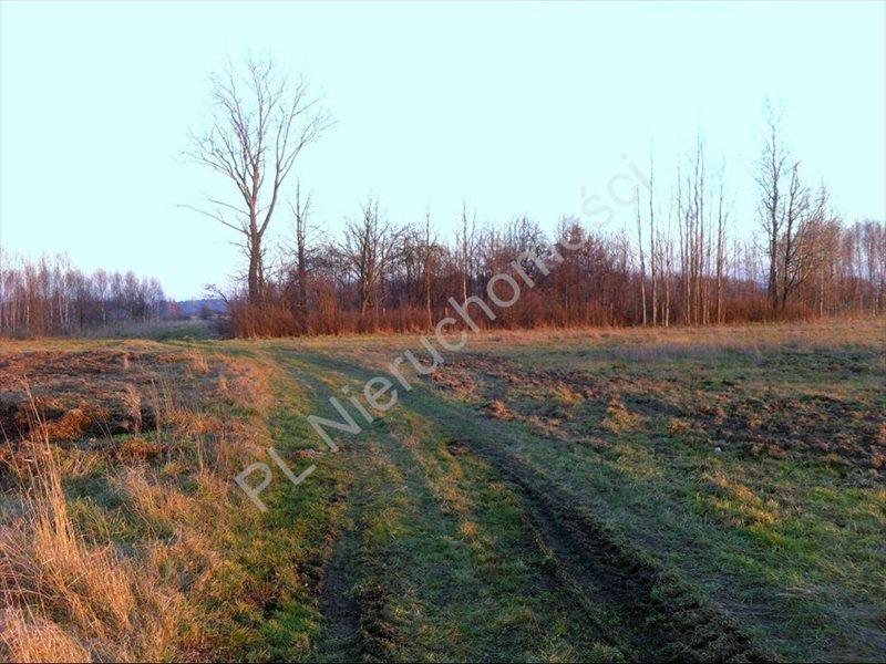 Działka rolna na sprzedaż Tyborów  20000m2 Foto 2
