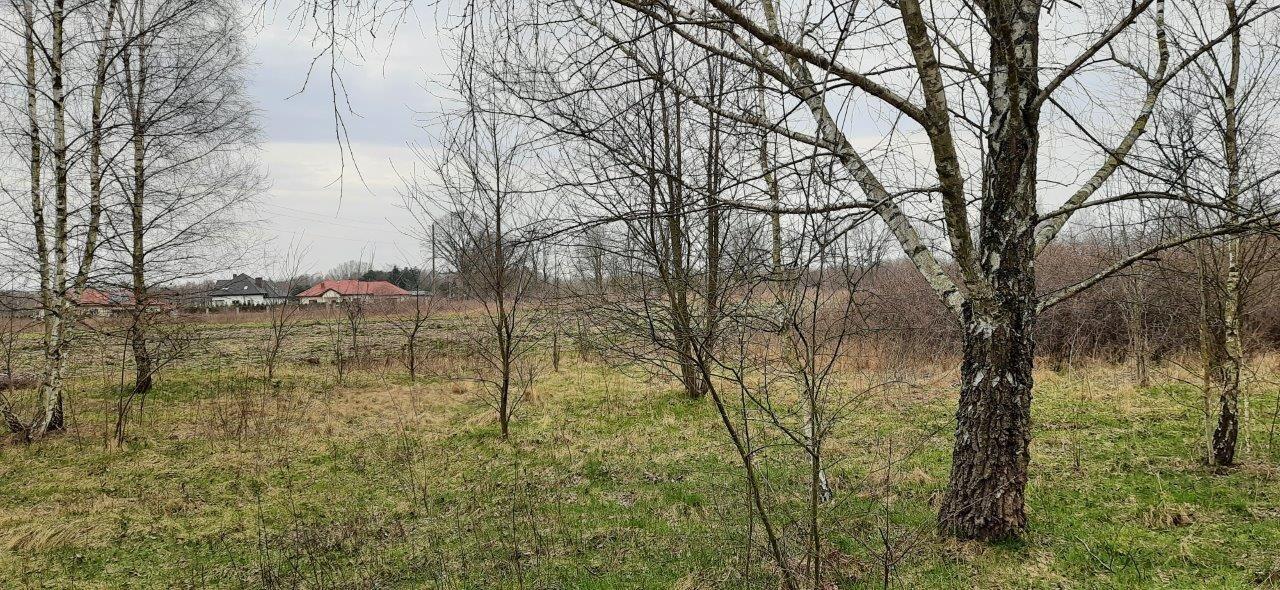 Działka rolna na sprzedaż Słubica-Wieś  3651m2 Foto 1