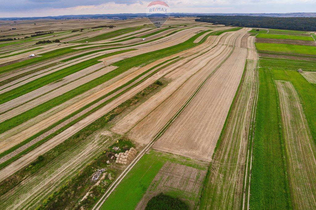Działka rolna na sprzedaż Sułoszowa  14190m2 Foto 6