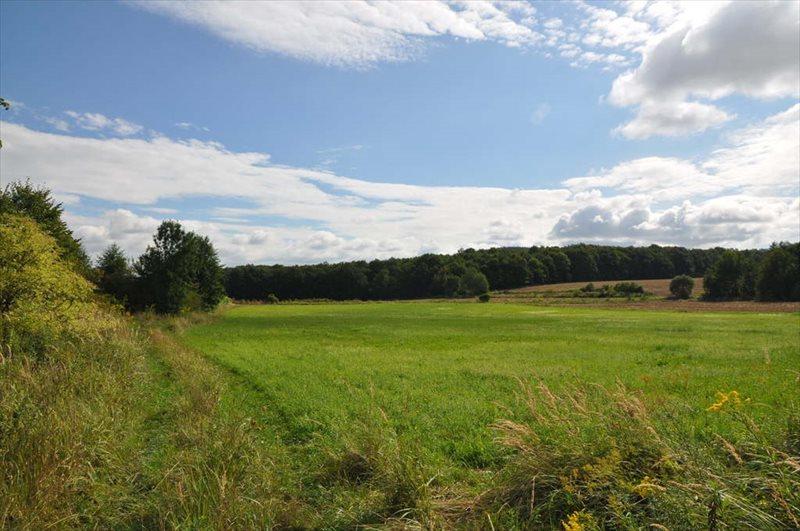 Działka rolna na sprzedaż Sulistrowice  4100m2 Foto 7