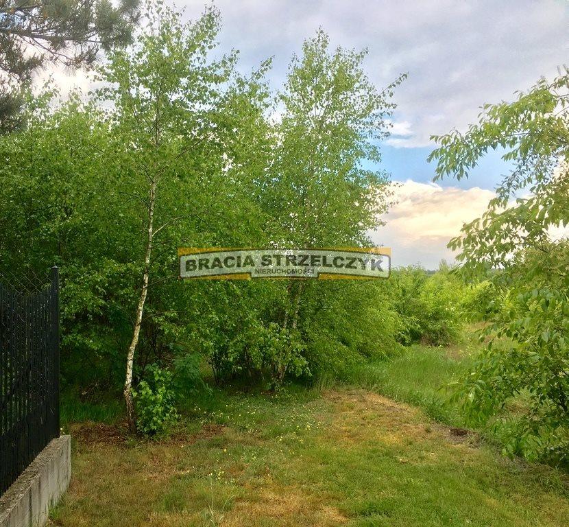 Działka rolna na sprzedaż Wysychy  5262m2 Foto 1